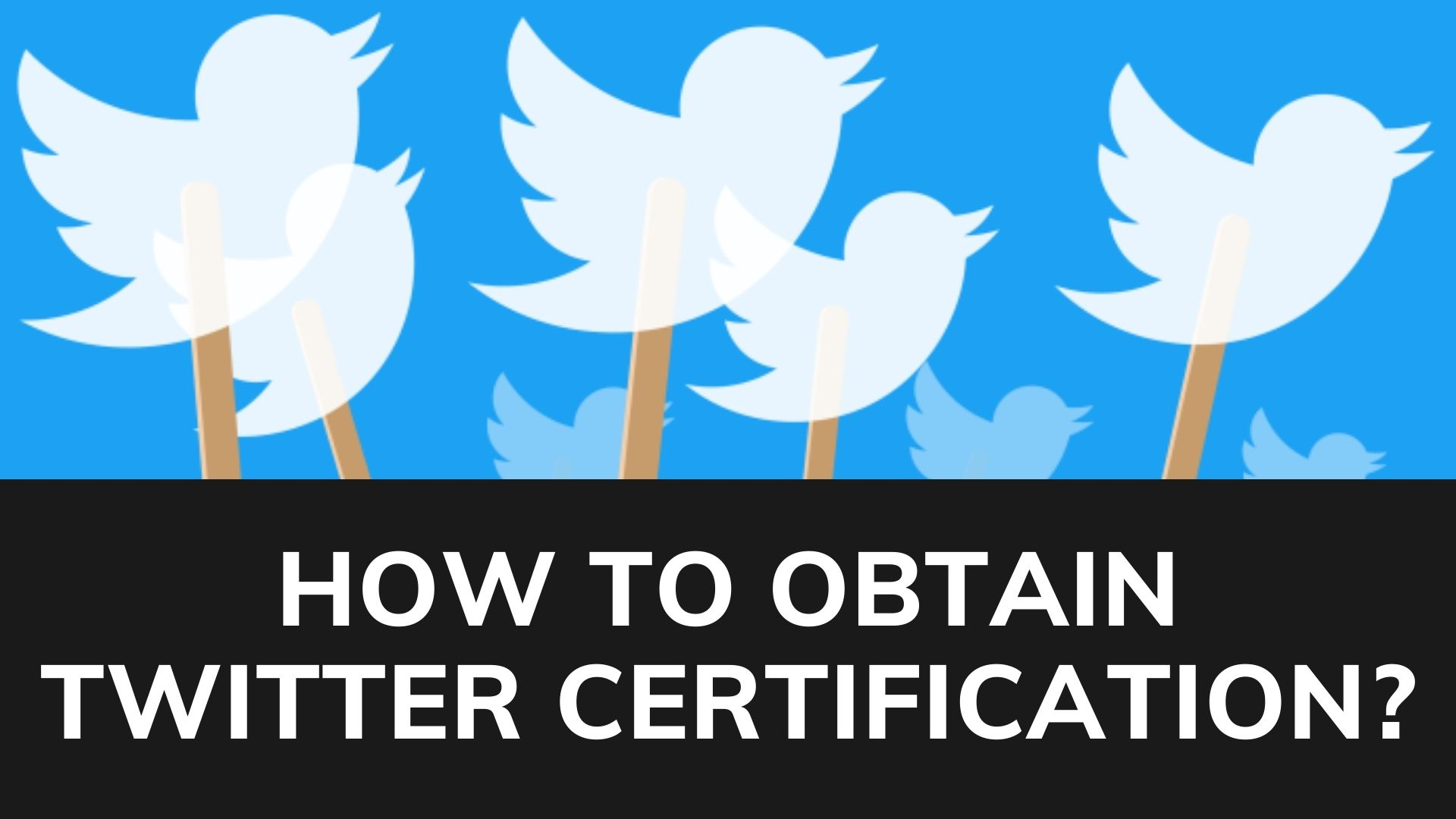 How to obtain twitter certification?